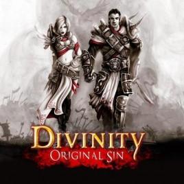 Divinity-Original Sin